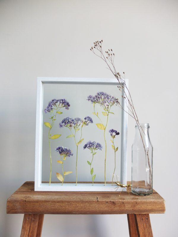 Dried Purple & White Local Flower Frame, Amsterdam - Big -